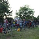 Walnuss am Schleusenpark