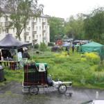 Kasseler Gartenkultur 19