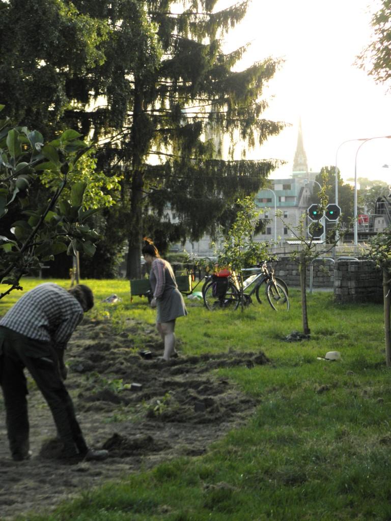 Park an der Schleuse - schöner Ort in Kassel!