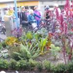 Essbare Stadt Beet Einkaufszentrum Waldau