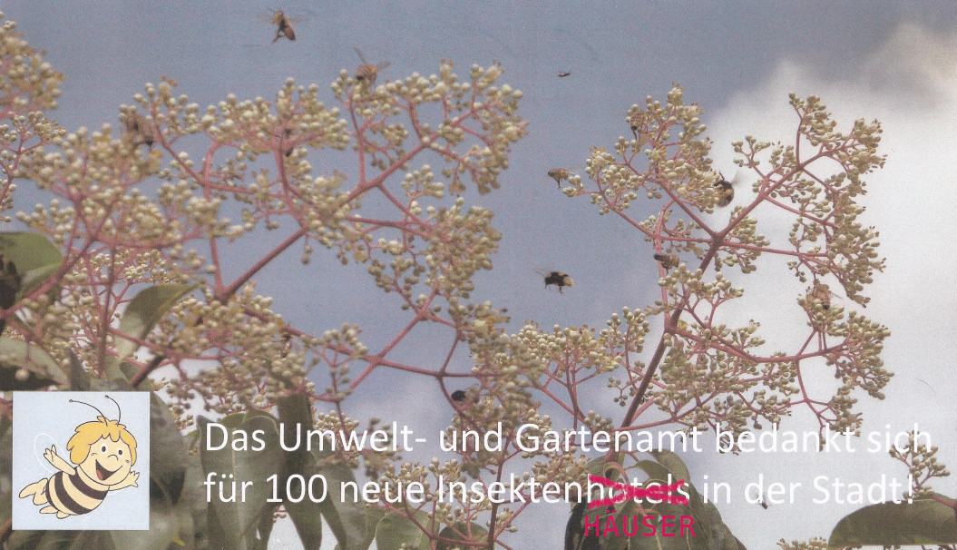IH-DankeStadt_pink