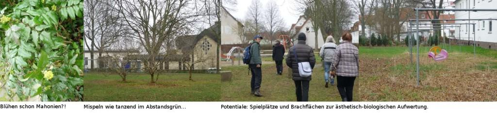 Bilderstrecke_Rundgang-Forstfeld_02.03.19