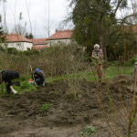 Bodenbearbeitung neues Rundbeet