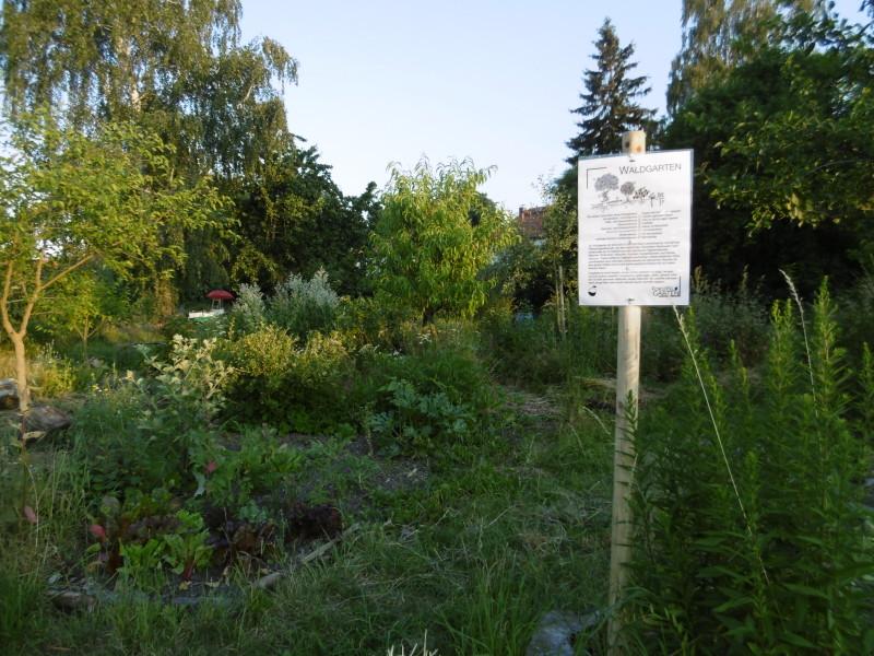 Infoschild Waldgarten