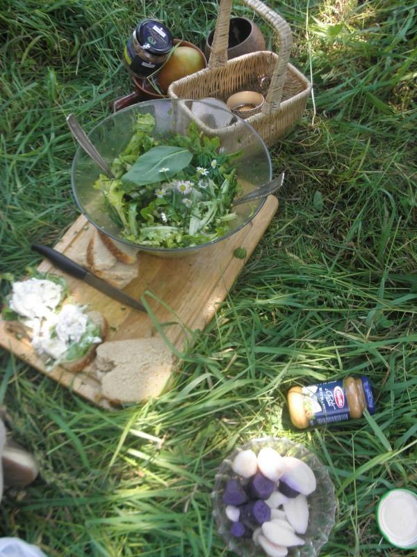 Mittagspause mit frischem Salat