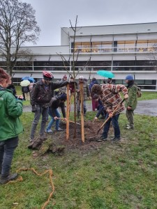 Pflanzaktion mit Fridays For Future